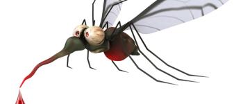 Sarvaš ima PRIORITET za tretiranje komaraca