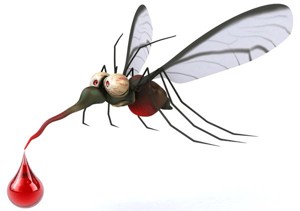 Photo of Sarvaš ima PRIORITET za tretiranje komaraca